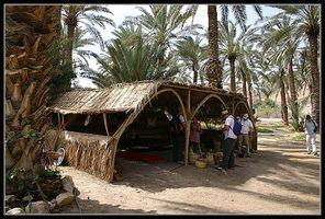 Хижина Тамар, девушка плетет различные предметы из листьев пальмы
